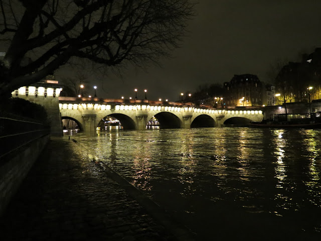 Paris pont neuf night
