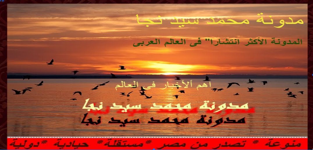 مدونة محمد سيد نجا