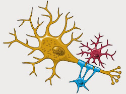 """<a href=""""http://theinfoscience.blogspot.in/2015/02/what-is-neuron.html"""">What is Neuron</a>"""