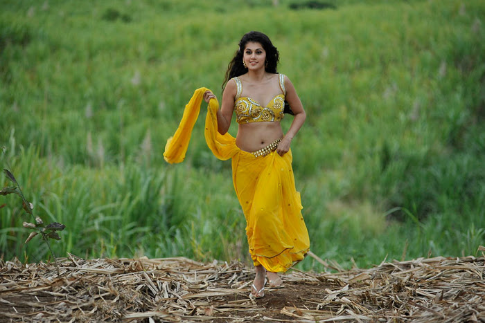 Mogudu Movie Actress Tapsee Spicy Navel Show Photos navel show
