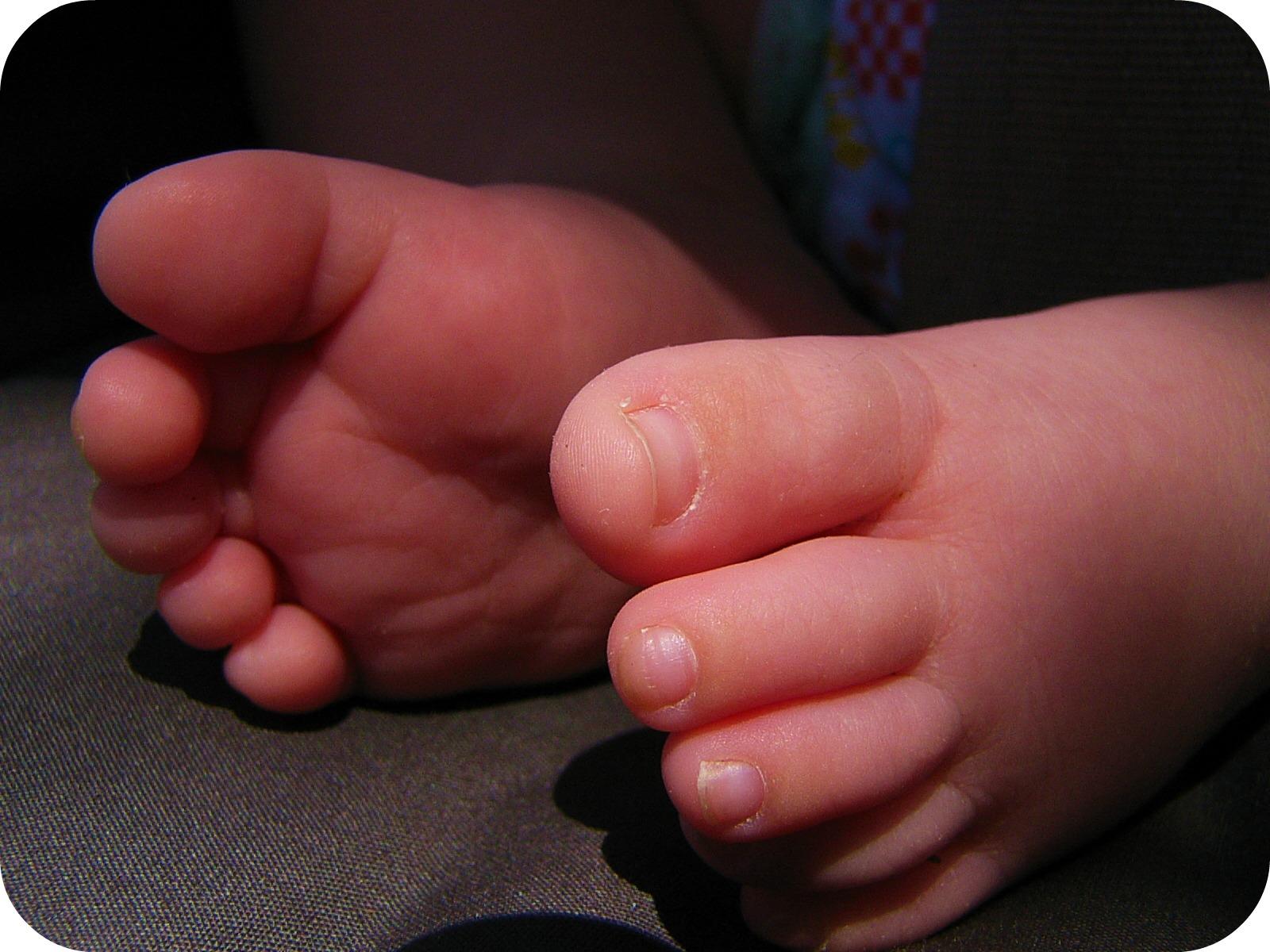 Baby feet - rgbstock.com