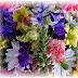 Florile ne fac mai fericiti si mai norocosi in dragoste. Si nu numai atat...