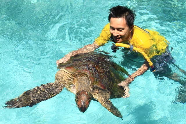 diving di pulau liukang tanjung bira makassar