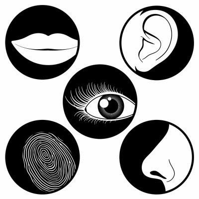 la perception d'autrui fritz Empiètement sur terrain d´autrui 10  fritz-henri mentha, 1922 6  le phénomène d'empiètement s' annonce dans plusieurs analyses de la phénoménologie de.
