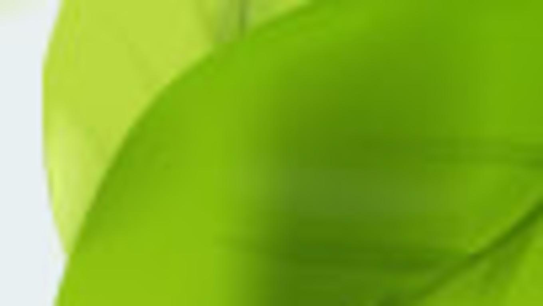 http://2.bp.blogspot.com/-LfLZOUwXcSs/TfDE1eqhaVI/AAAAAAAAAbE/ZZRT2A5jjk4/s1600/326224-1360x768-w03.jpg