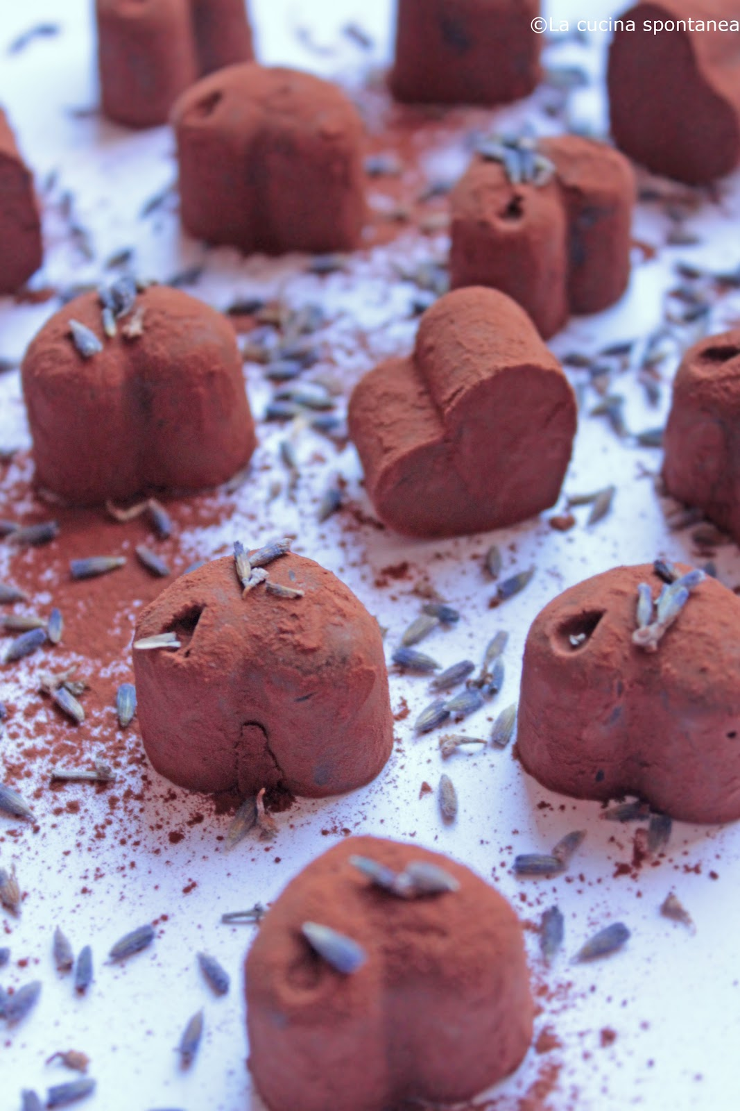 Cioccolato e lavanda - La cucina spontanea - ricette, fotografie e ...