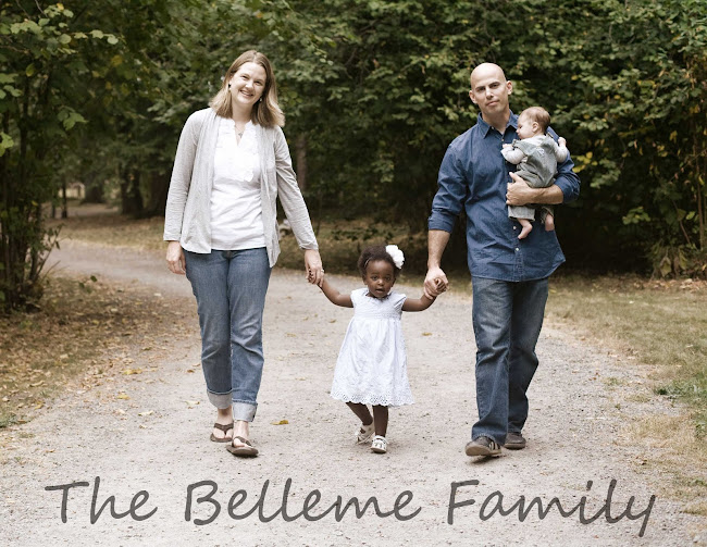 The Belleme Family