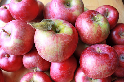 Apples are a fruit in season during fall