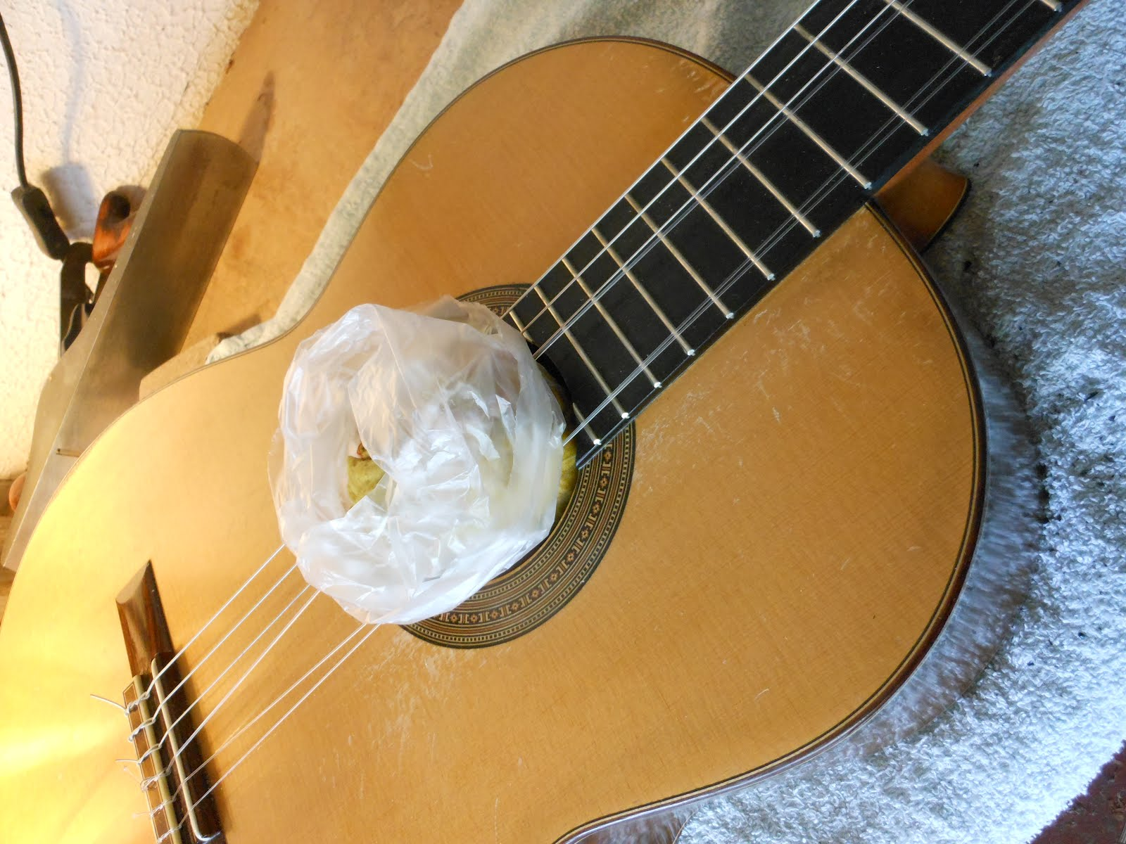 Discover great guitars