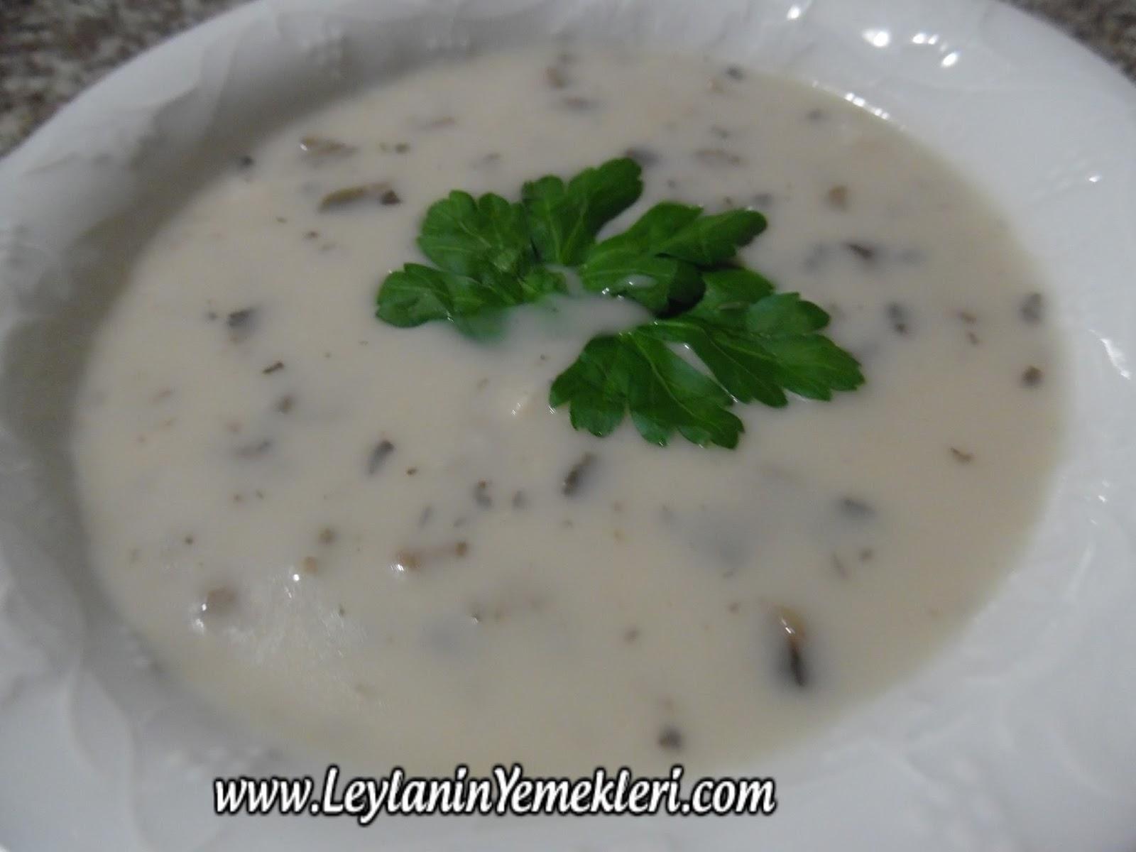 Sütlü mantar çorbası tarifi