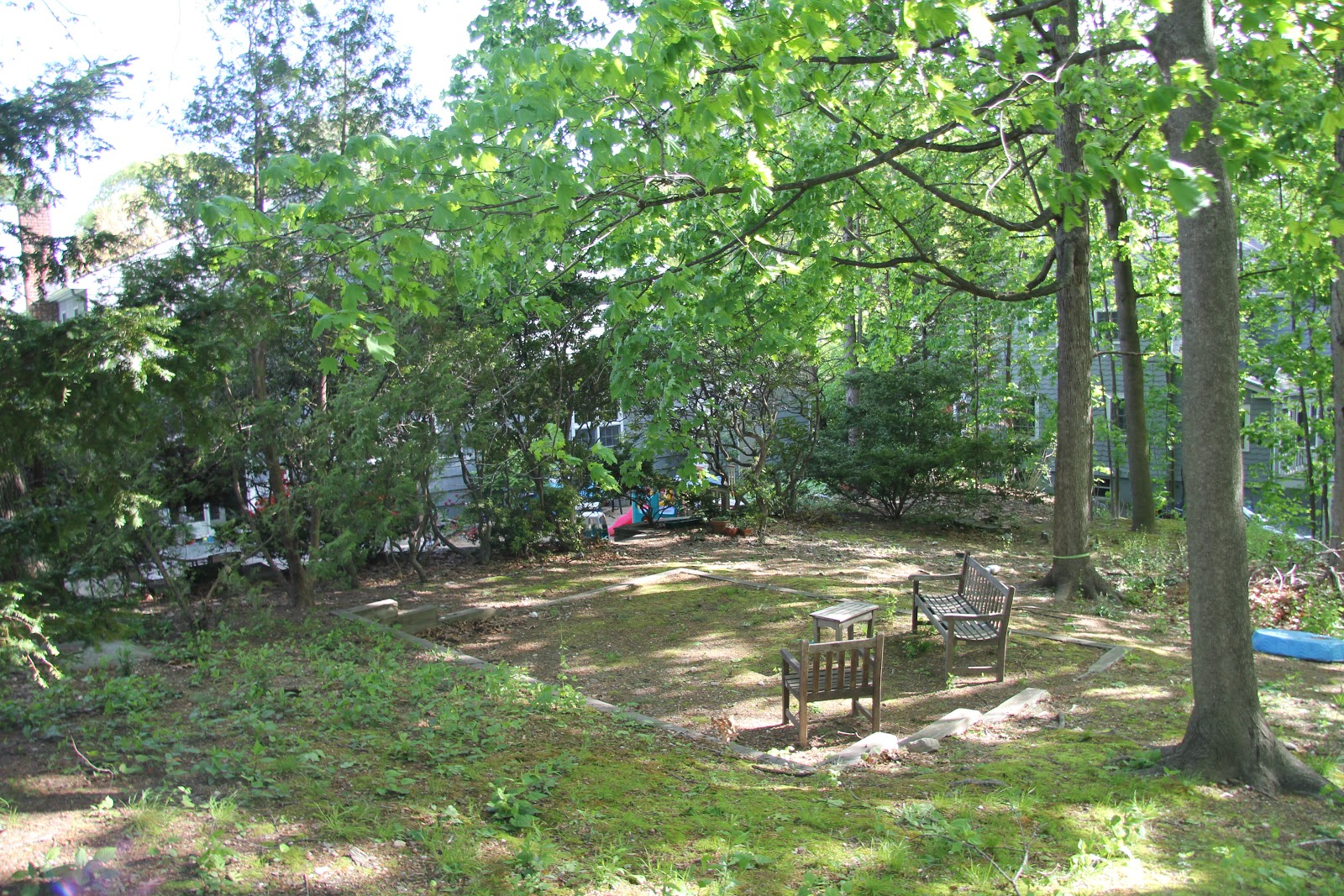 Gardening and gardens backyard renovation complete for Landscaping ideas for wooded areas