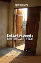 Bnei Avraham Ahuvecha: Gerim in Chassidic Thought