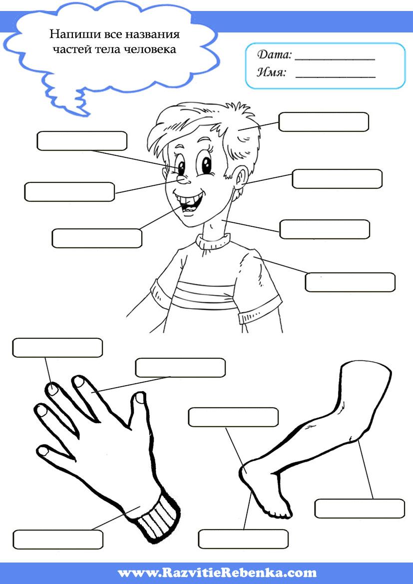 Сайт для воспитателей учителей родителей и детей