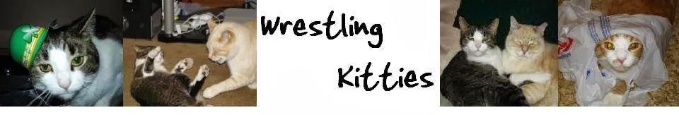 Wrestling Kitties