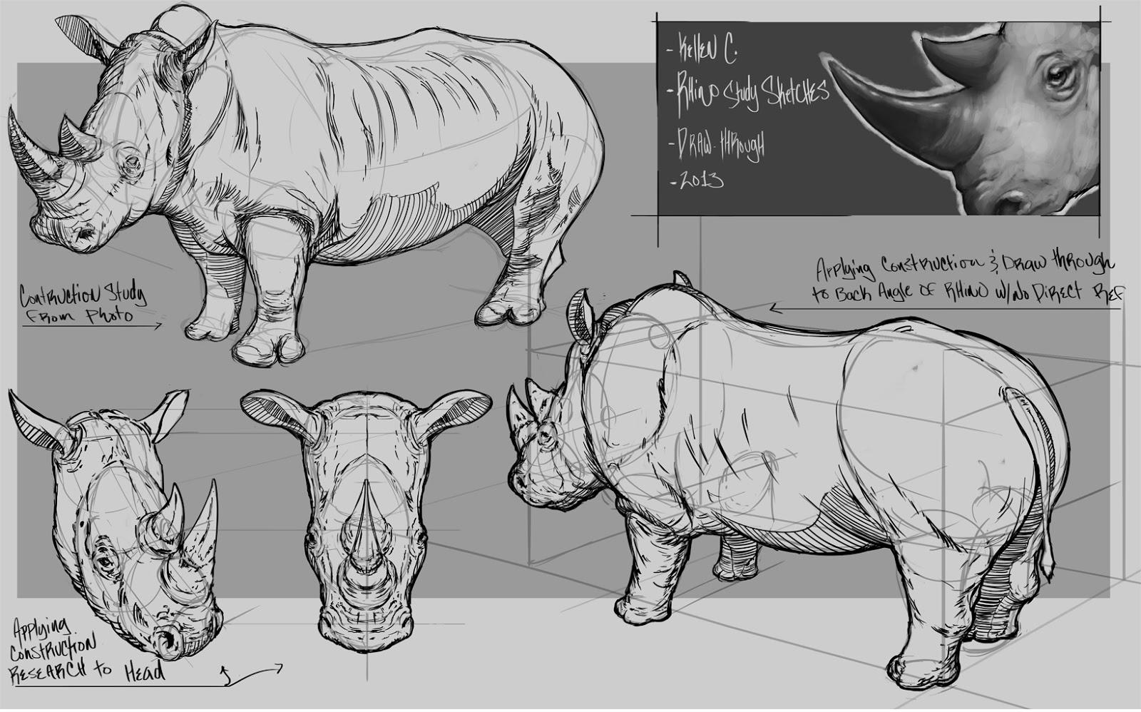 Art Of Kellen Carranza Studying Animal Anatomy