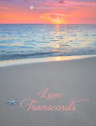 Love Transcends - Waikiki