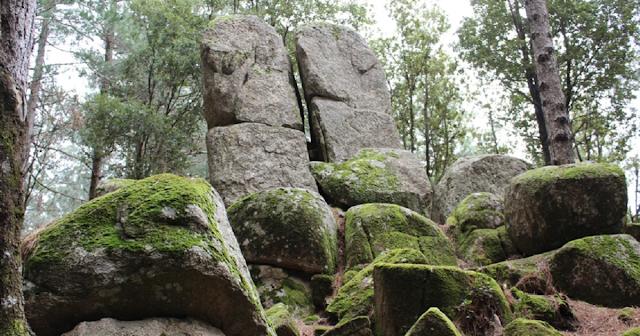 Cultura e arte per valorizzare i luoghi, a Nardodipace il Megalithos Festival, si parte sabato 17 luglio. Alle 12 la presentazione, a seguire la Sagra della Capra e due spettacoli al geosito A