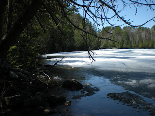 May 10th, still lots of ice going into opeing fishing near Ely MN, http://huismanconcepts.com/