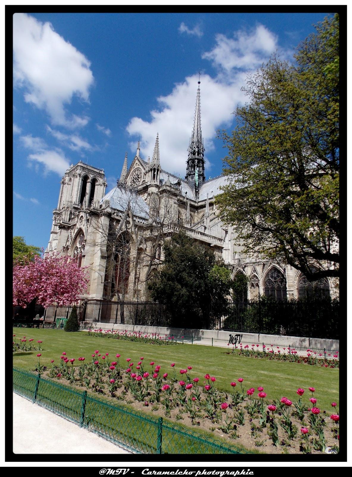 Caramelcho photographie clic clac notre dame de paris for Clic clac paris