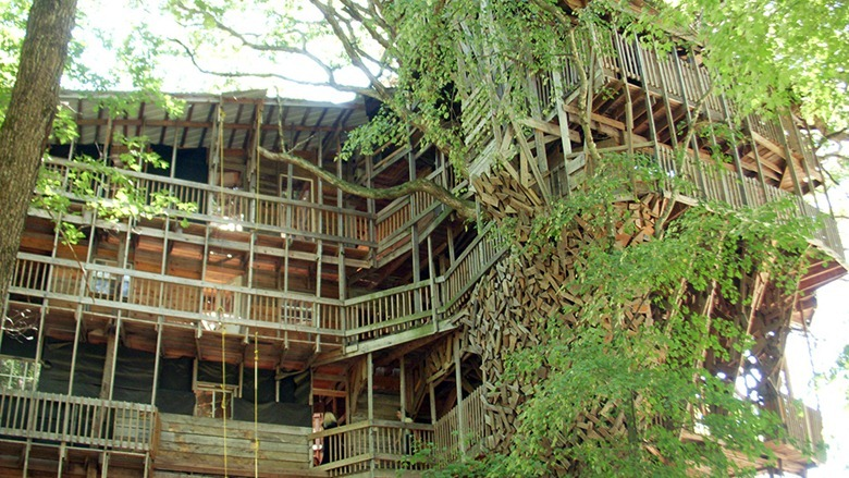 Build it yourself tree houses - Biggest treehouse in the world ...