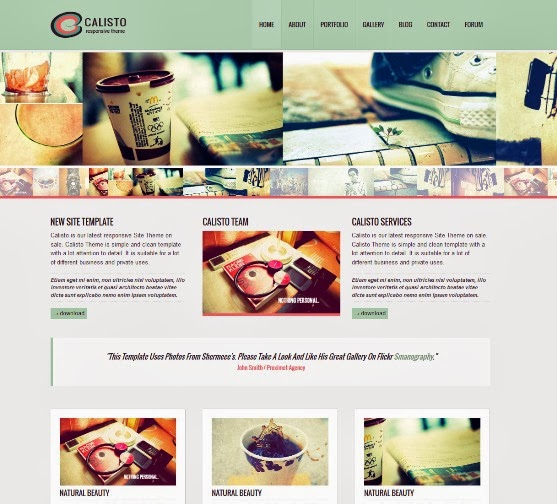 Calisto Responsive WordPress Theme