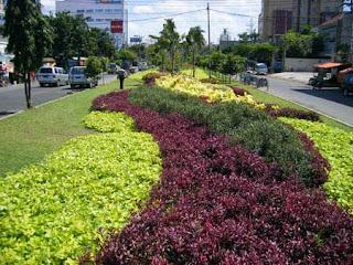 Tukang taman jakarta | penghijauan sejabodetabek | supplier aneka tanaman