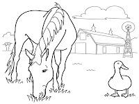 Gambar Kuda Sedang Memakan Rumput Untuk Diwarnai Anak-Anak