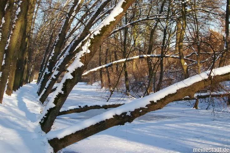 <<<---Der Schlossgraben im Winter--->>>