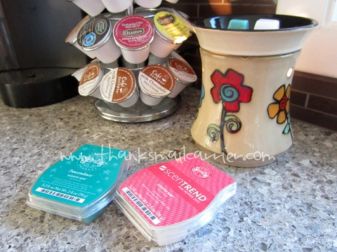 Scentsy bars and warmer