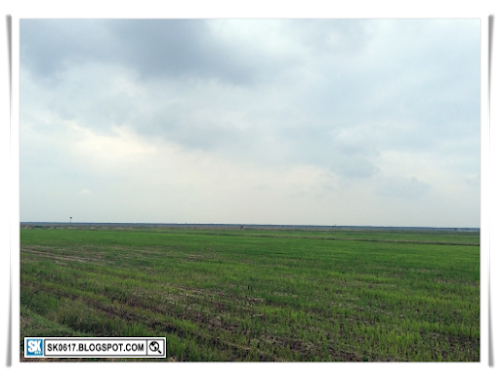 Outstation Trip - The Paddy Field