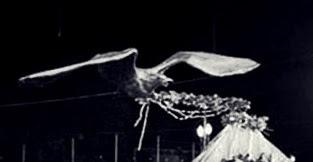Águia 1973