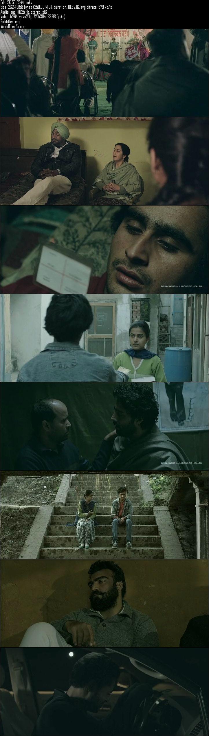 Screen Shot Of Qissa Panjab 2015 Full Movie Free Download 300MB DVDRip 480P ESubs Watch Online
