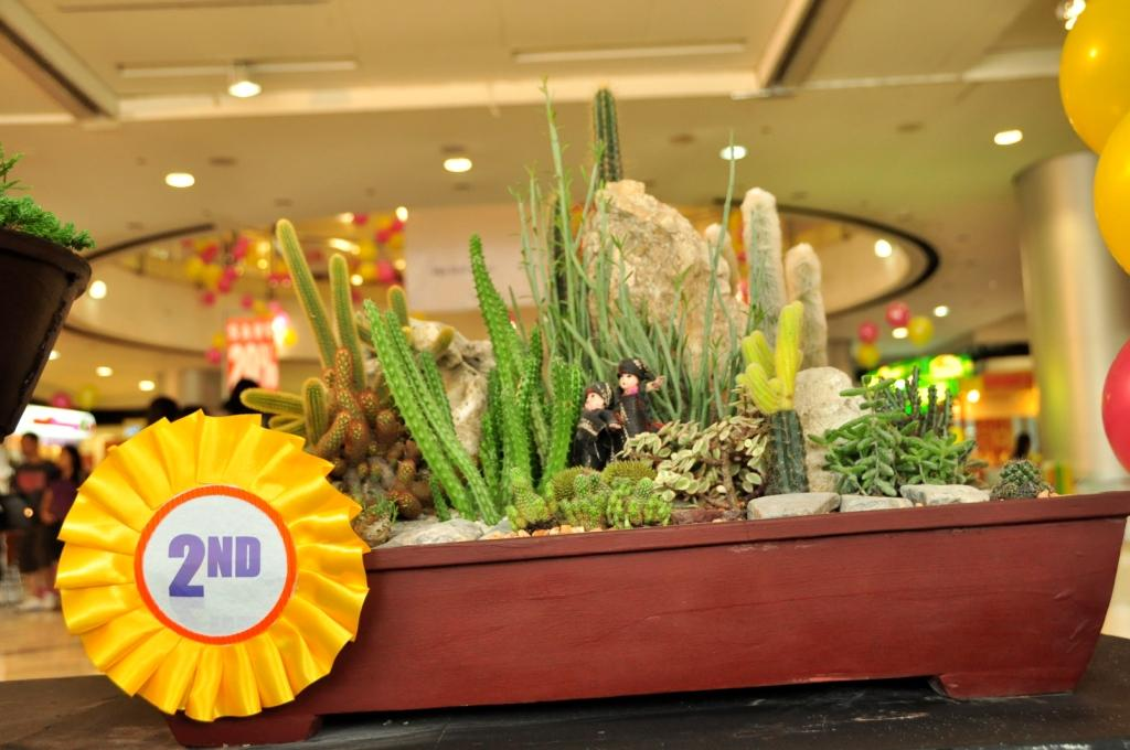Dish Garden Designs At The 48nd Flora Mindanao At SM Davao Fascinating Dish Gardens Designs