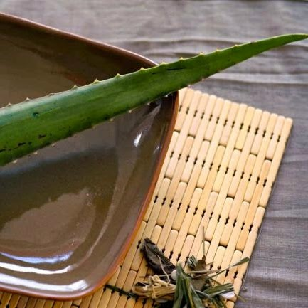 Alimentaci n nutrici n salud 5 plantas medicinales for Plantas para bajar de peso