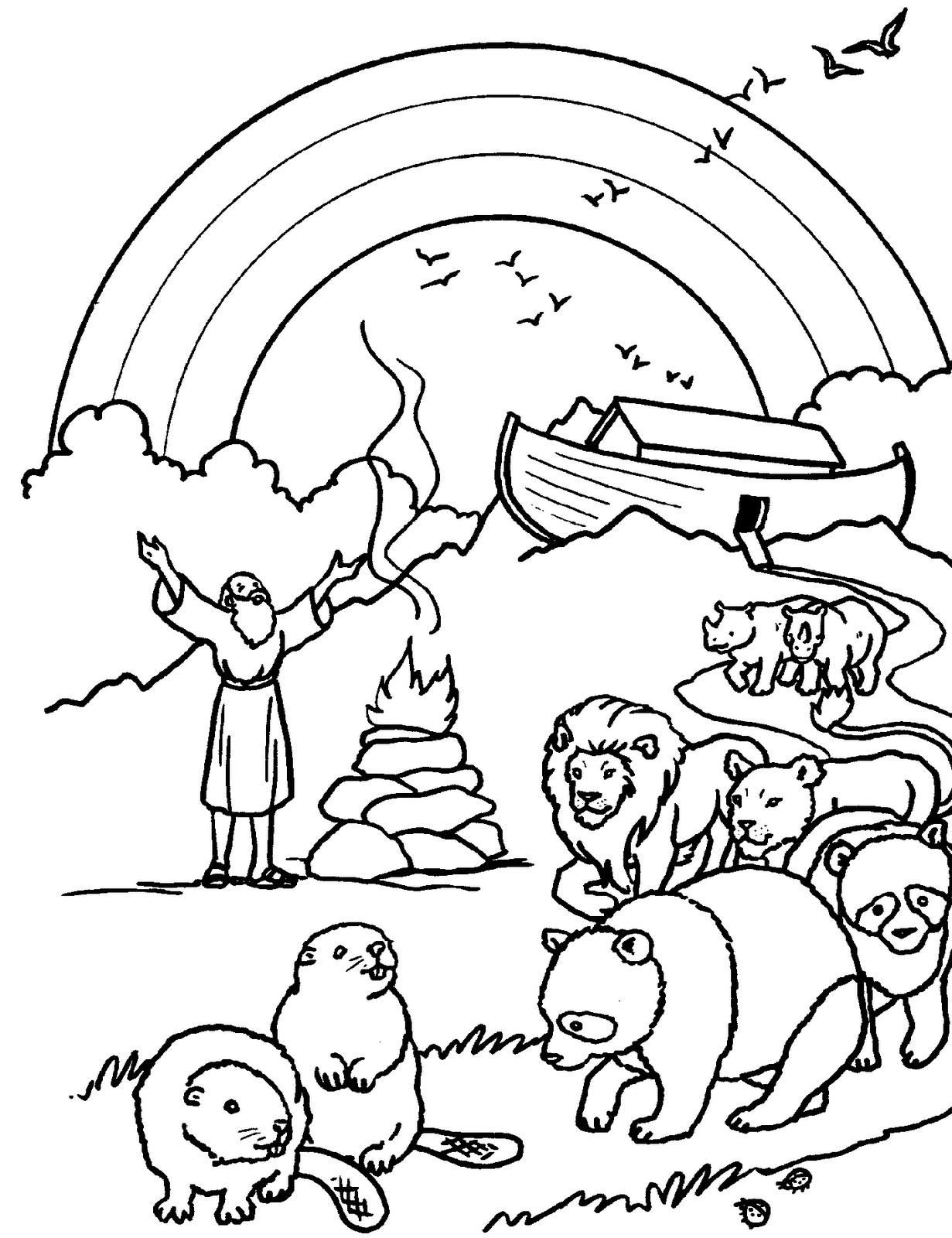 PZ C: dibujo para colorear