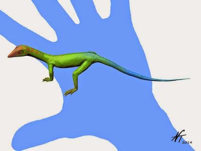 Cosesaurus