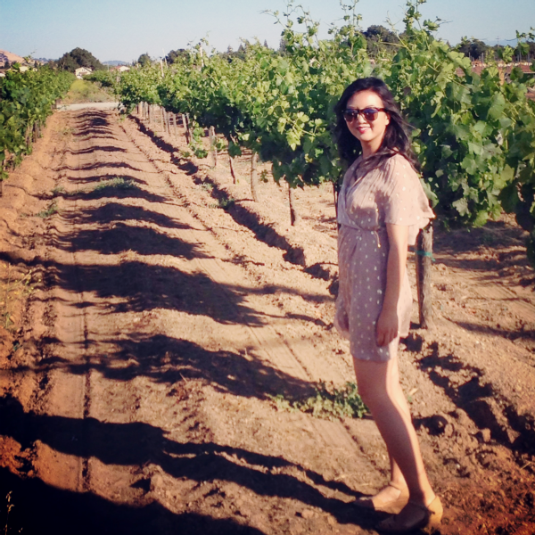 vineyard walk