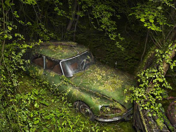 Paradise Parking - fotografia de Peter Lippmann