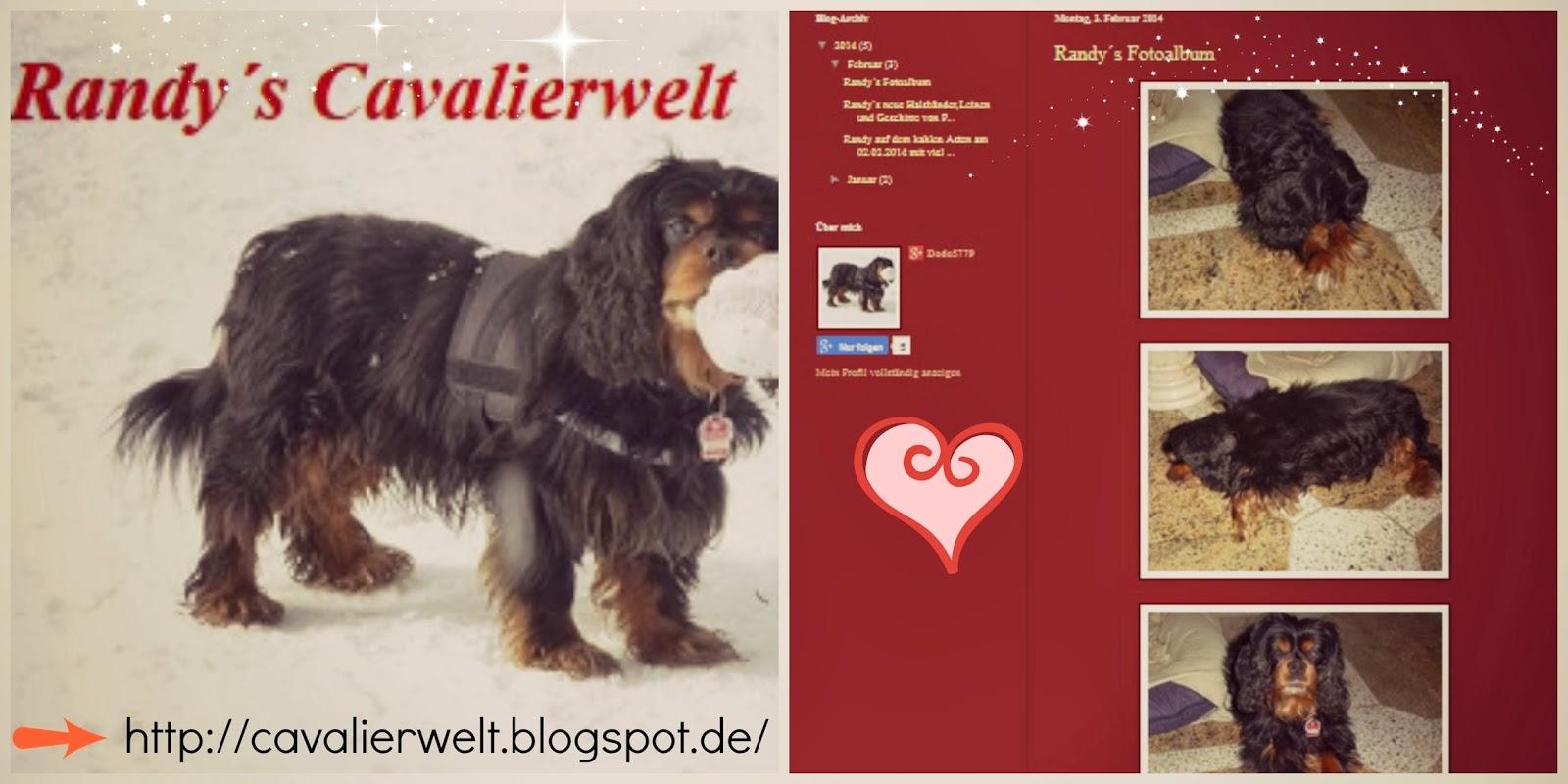 http://cavalierwelt.blogspot.de/