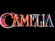 IMÁGENES PARA PHOTOSCAPE DE NOMBRES DE FLORES camelia