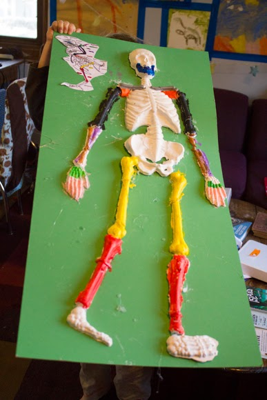craft knife: homeschool science: comparison of the human skeleton, Skeleton