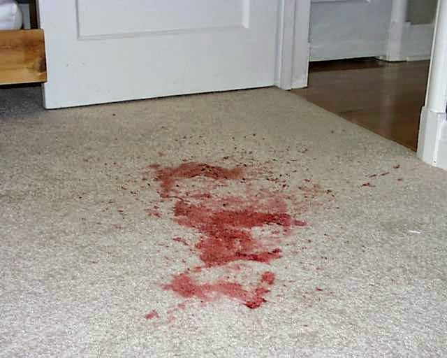 Remove all how to remove blood stains from carpets - Remove carpet stains ...