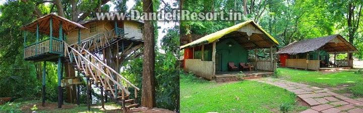 Resorts Prices in Dandeli Afford The Resort Price
