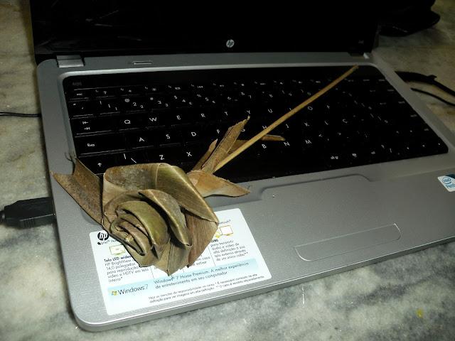 Rosa feita com folha de palmeira