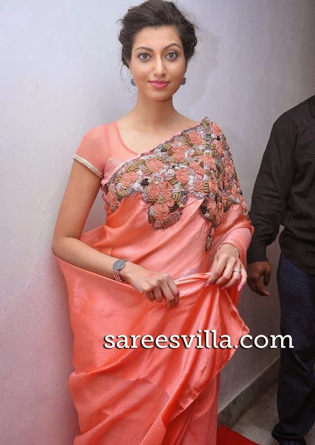 Actress Hamsa Nandini in  Designer Saree