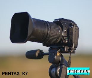 Pentax K7