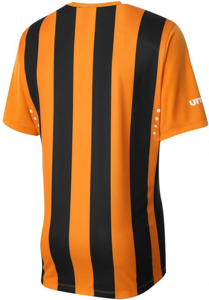 Umbro Hull City 14 15 Home Kit (2)