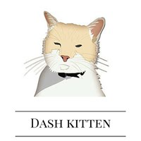 Join us at DashKitten.com