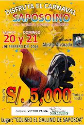 COLISEO EL GALLINO - SAPOSOA