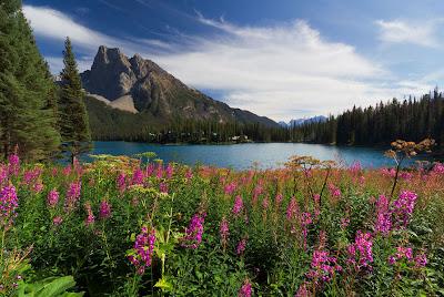 Lago Emerald en Canadá - Emerald Lake B.C